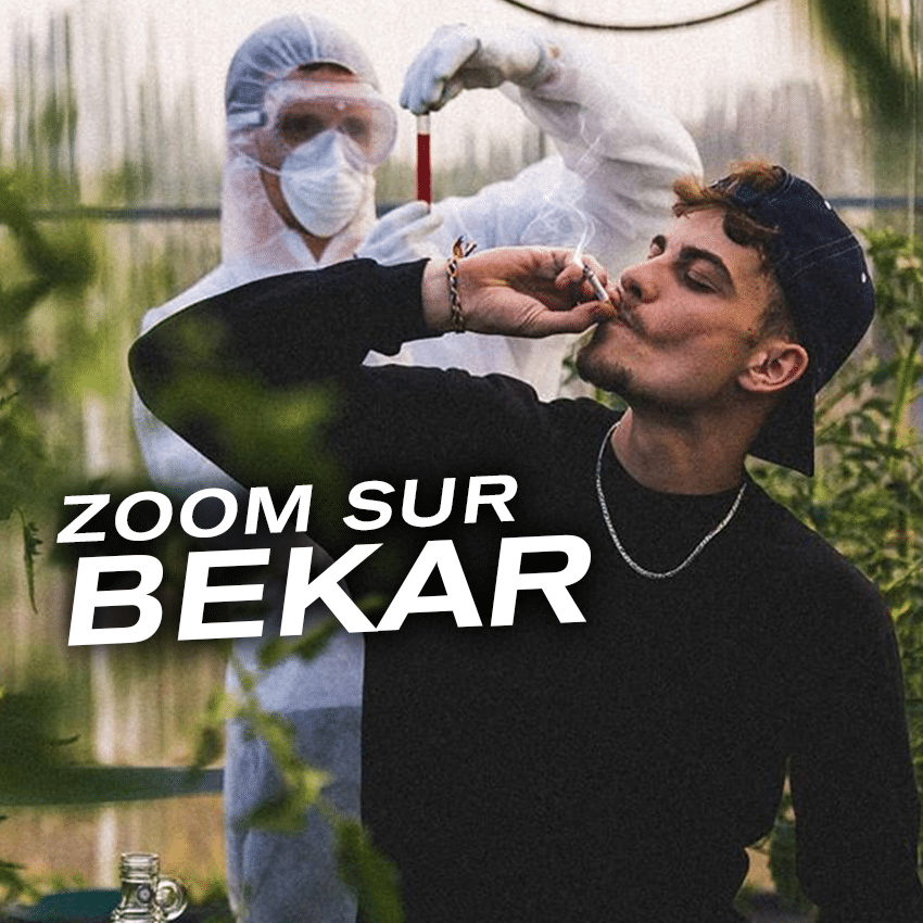 Image de l'article Zoom sur Bekar
