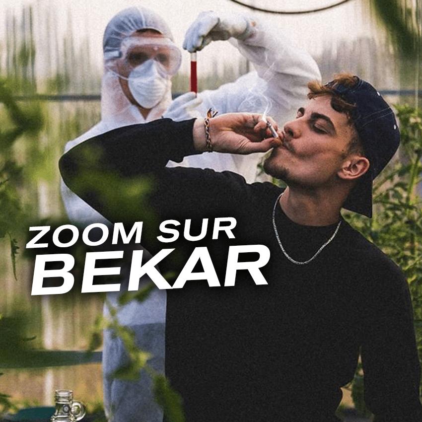 Zoom sur Bekar