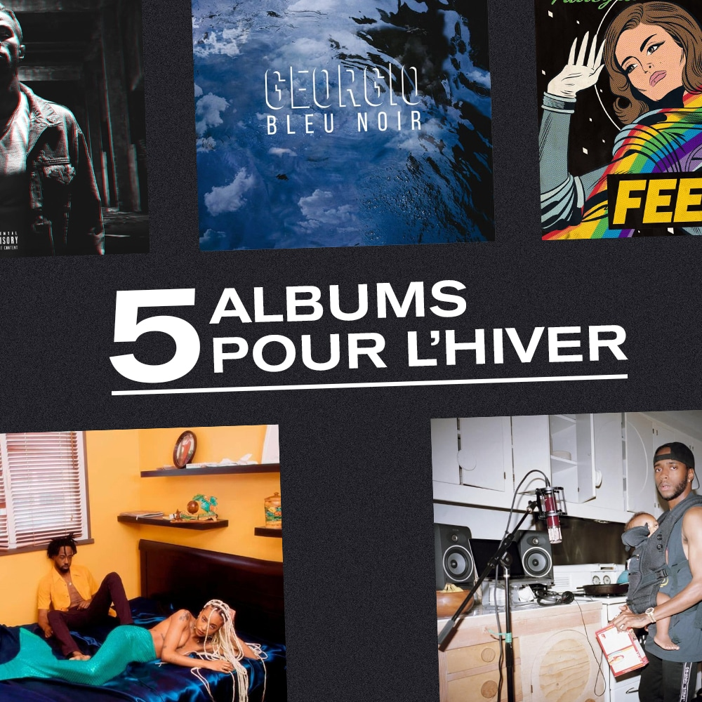 Photo de l'article : 5 albums pour l'hiver